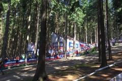 Mistrovství světa v horských kolech